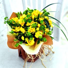 상큼한 겨울 꽃 - Delicious yellow 꽃배달하시려면 이미지를 클릭해주세요