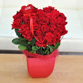 [서울배송] LOVEday - 하트 뿅뿅(화기는 변경될 수 있습니다) 꽃배달하시려면 이미지를 클릭해주세요