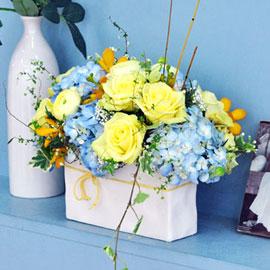 [서울배송] spring 꽃배달하시려면 이미지를 클릭해주세요