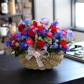 [서울배송] 매혹적인장미 - 장미의 순정 꽃배달하시려면 이미지를 클릭해주세요