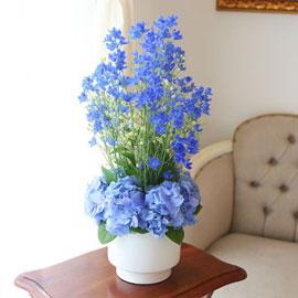 [서울배송] Beautiful colors - Silky Delphinium 꽃배달하시려면 이미지를 클릭해주세요