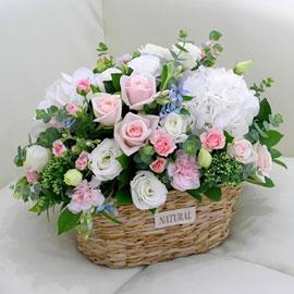 [서울배송] Lovely sweet - Pastel Pink 꽃배달하시려면 이미지를 클릭해주세요