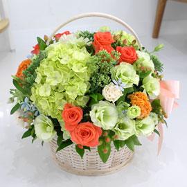 [서울배송] Lovely sweet - 달콤오렌지 꽃배달하시려면 이미지를 클릭해주세요