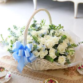 [전국예약배송][100] Lovely sweet II - White blossom 꽃배달하시려면 이미지를 클릭해주세요