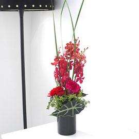 [서울배송]  Modern & Natural - 사랑하는 사람을 위하여 꽃배달하시려면 이미지를 클릭해주세요