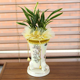 무늬가 아름다운 동양란 환희(화기는 청자 투각분으로 배송) 꽃배달하시려면 이미지를 클릭해주세요