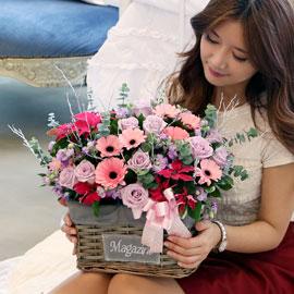 [서울배송] Jingle bell - 겨울 고백 꽃배달하시려면 이미지를 클릭해주세요