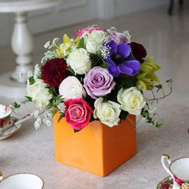 [서울배송] Spring & Sweet - 무지개너머(화기는 변경될 수 있습니다) 꽃배달하시려면 이미지를 클릭해주세요