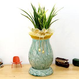 아름다움이 있는 공간 - 황용금 *화기 비슷한 제품으로 변경됩니다* 꽃배달하시려면 이미지를 클릭해주세요