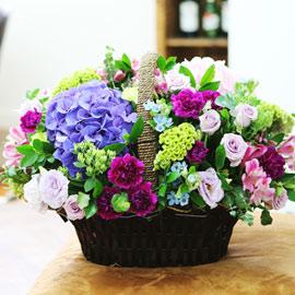 [서울배송]special day-Blue moon 꽃배달하시려면 이미지를 클릭해주세요
