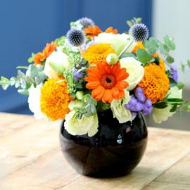 special day-오렌지 사파이어 꽃배달하시려면 이미지를 클릭해주세요