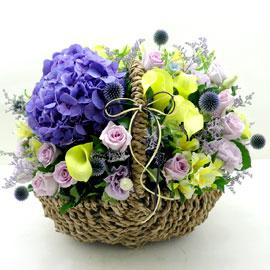 special day - 칼라릴리의 유혹 꽃배달하시려면 이미지를 클릭해주세요