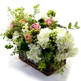 아름다운 인생 꽃배달하시려면 이미지를 클릭해주세요