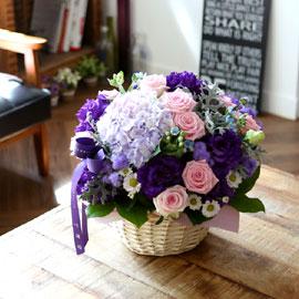 세련된 느낌의 보라꽃바구니 꽃배달하시려면 이미지를 클릭해주세요