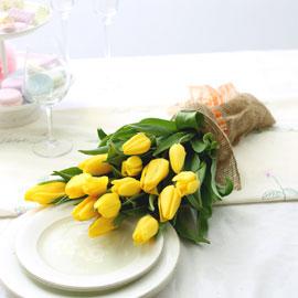 봄봄봄_ 부드러운 로맨스 꽃배달하시려면 이미지를 클릭해주세요
