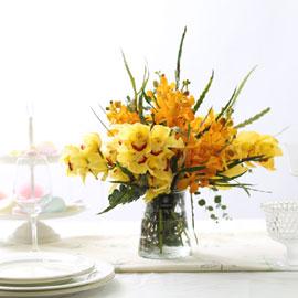 봄봄봄_봄이 왔어요.우리들 마음에 꽃배달하시려면 이미지를 클릭해주세요