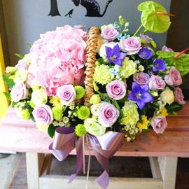 꽃! 밭에서♬ - Anthurium Point 한 아름 꽃배달하시려면 이미지를 클릭해주세요
