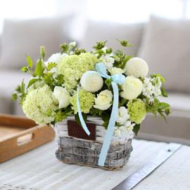 프쉬케 어느날 - Summer white 꽃배달하시려면 이미지를 클릭해주세요