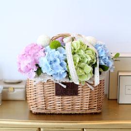 프쉬케 어느날 - 하늘 분홍 하양 연두 꽃배달하시려면 이미지를 클릭해주세요