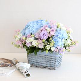 프쉬케 어느날 - Charming blue 꽃배달하시려면 이미지를 클릭해주세요
