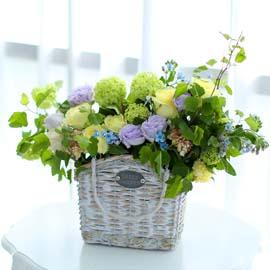 눈부시도록 멋지고 아름다운 인연 - 살랑 살랑 향기로운 꽃배달하시려면 이미지를 클릭해주세요