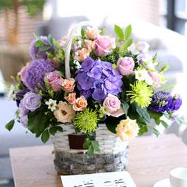 프쉬케 어느날 - 사랑의 보라 빛깔들 꽃배달하시려면 이미지를 클릭해주세요