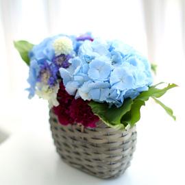 눈부시도록 멋지고 아름다운 인연 - Blue Blue 꽃배달하시려면 이미지를 클릭해주세요