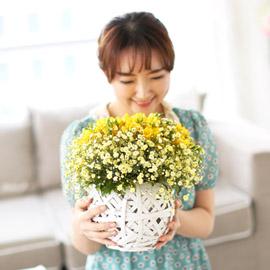 spring&sweet - Angel yellow (바구니 품절로로 다른 바구니로 대체됩니다) 꽃배달하시려면 이미지를 클릭해주세요