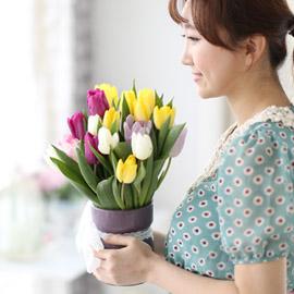 Spring&Sweet  - coloful tulip 꽃배달하시려면 이미지를 클릭해주세요