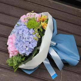 핑크 블루 수국 꽃배달하시려면 이미지를 클릭해주세요