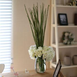 Ways to Freshen Your Home - WHITE(화기 품절시 변경될 수 있음) 꽃배달하시려면 이미지를 클릭해주세요