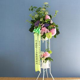 특별한 축하용 화환 - 플라워119 디자인 축하화환_NO 5 꽃배달하시려면 이미지를 클릭해주세요