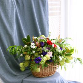 beautiful, full blooms 꽃배달하시려면 이미지를 클릭해주세요