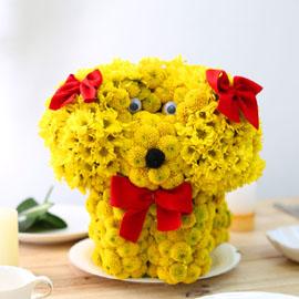 Special day gift - flower puppy(예약주문만가능) 꽃배달하시려면 이미지를 클릭해주세요