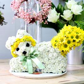 My best friend - happy(예약주문만가능) 꽃배달하시려면 이미지를 클릭해주세요