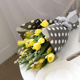 Fresh spring flower Yellow tulips