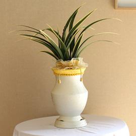명품동양란 - 수려한 잎무늬와 동양적 고혹적인 꽃을가진 태평양 꽃배달하시려면 이미지를 클릭해주세요
