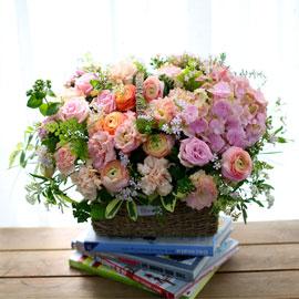 Spring loves 봄날의 동화 꽃배달하시려면 이미지를 클릭해주세요