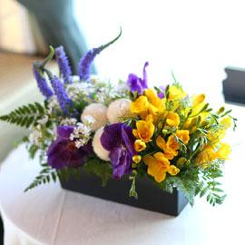 봄, 꽃들의 축제 Spring haze 꽃배달하시려면 이미지를 클릭해주세요