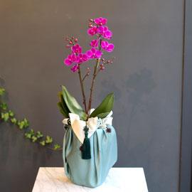 감사의 마음을 담아 - 만천홍 꽃배달하시려면 이미지를 클릭해주세요