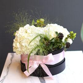 White day Springtime for you 꽃배달하시려면 이미지를 클릭해주세요