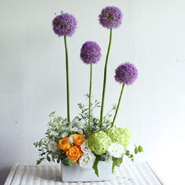 [서울/수도권배송]Yes it is Allium 꽃배달하시려면 이미지를 클릭해주세요