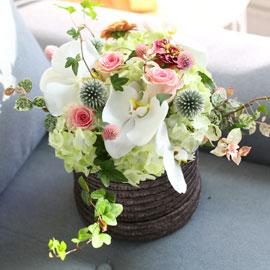 [서울무료배송, 이외지역 추가배송비] Beautiful in white 꽃배달하시려면 이미지를 클릭해주세요
