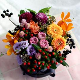 [서울 수도권배송]Fall in love 가을을 탄다 꽃배달하시려면 이미지를 클릭해주세요