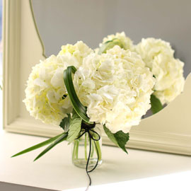 [서울만무료배송, 이외지역 추가배송비]kinfolk style - 화이트수국 꽃배달하시려면 이미지를 클릭해주세요