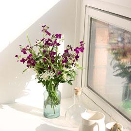 [서울만무료배송, 이외지역 추가배송비]kinfolk style - 삶의 생기를 꽃배달하시려면 이미지를 클릭해주세요