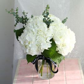 '(必)환경'시대 오아시스없는 플라워화병 -White hydrangea