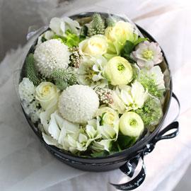 Love is a rose - White swan 꽃배달하시려면 이미지를 클릭해주세요