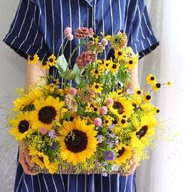 Sunny dream 꽃배달하시려면 이미지를 클릭해주세요