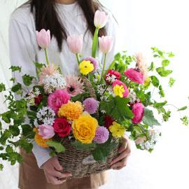 [서울 수도권배송]Spring & sweet 봄 사랑 꽃배달하시려면 이미지를 클릭해주세요